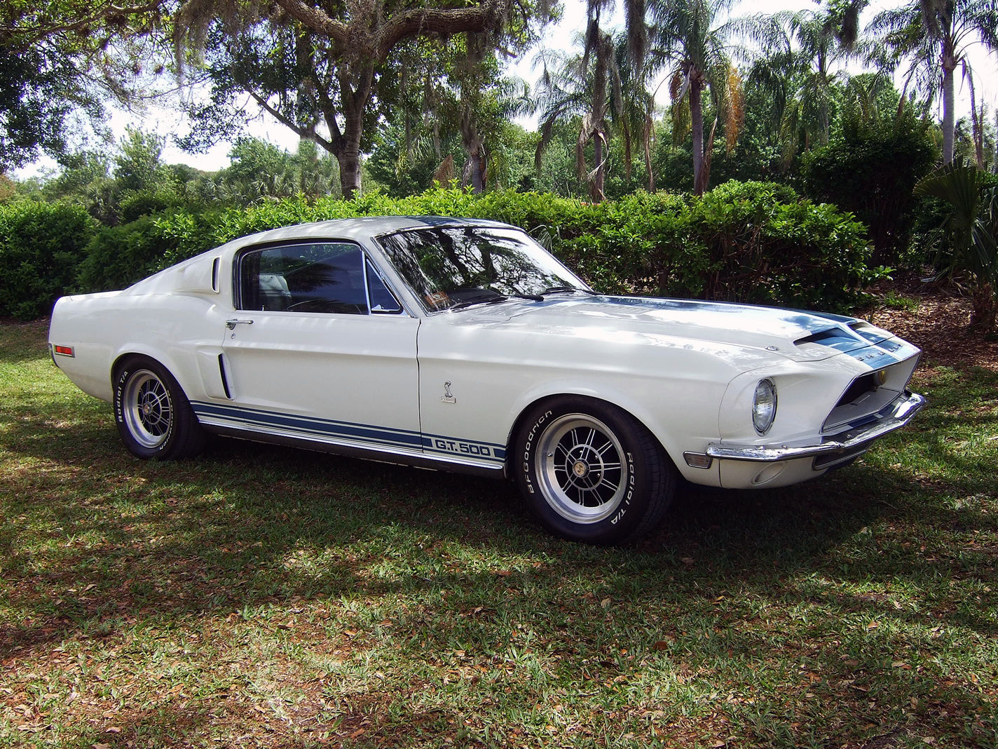 1968 Shelby Gt 500 Hollywood Wheels Auction Shows