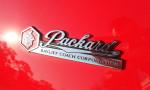 1934 Packard Bayliff Restomod Roadster (15)