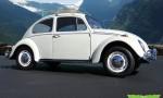 1966 VW Beetle (1)