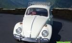 1966 VW Beetle (2)